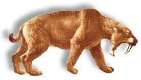 Prehistorische sabeltandtijger