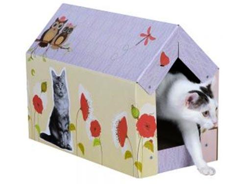 Kat in een kattenhuisje