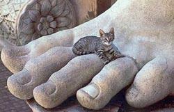 Katten bij de Romeinen