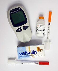 Insuline en bloedmeter bij suikerziekte van een kat