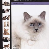 Over Dieren - Katten en kittens