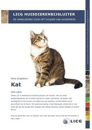 Huisdierenbijsluiter: kat