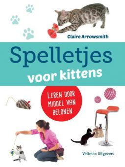 Spelletjes voor kittens