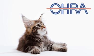 OHRA Huisdierenverzekering