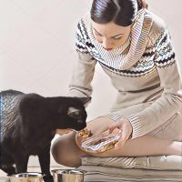 Koolhydraatarm kattenvoer voor katten met diabetes